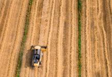 Zakup sprzęt rolniczy na aukcjach poleasingowych